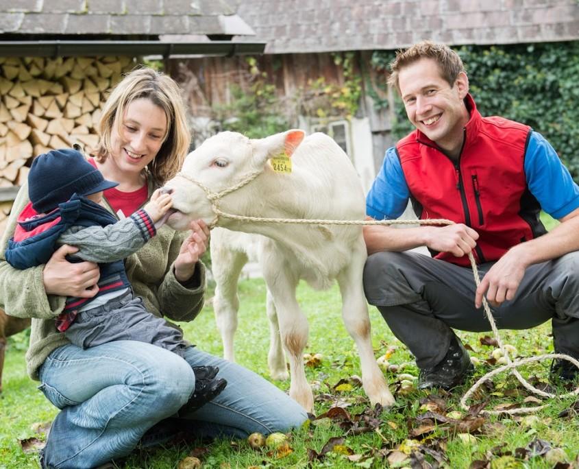 Geborgenheit für Nutztiere